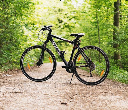 Rowerek stacjonarny czy trekkingowy